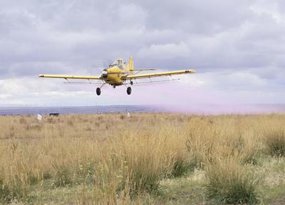 Idaho ag aviators hone their skills