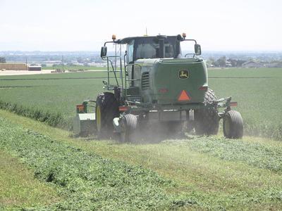 Northwest farmers doing OK despite low crop prices