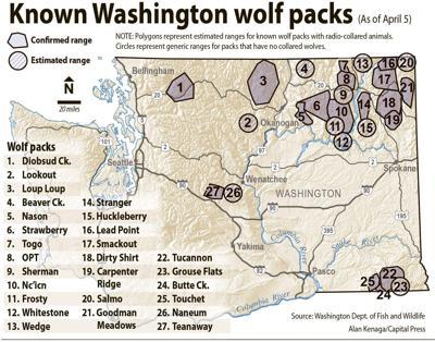 Wash. wolfpacks