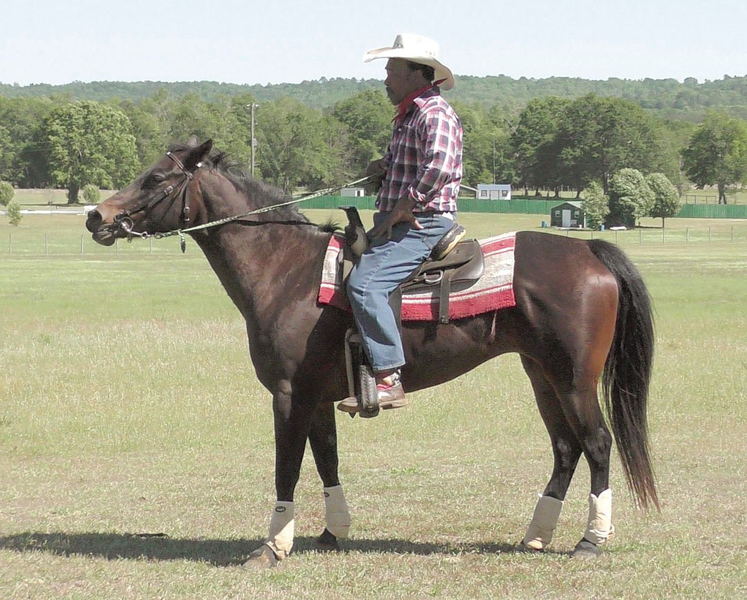 Black Cowboy Festival