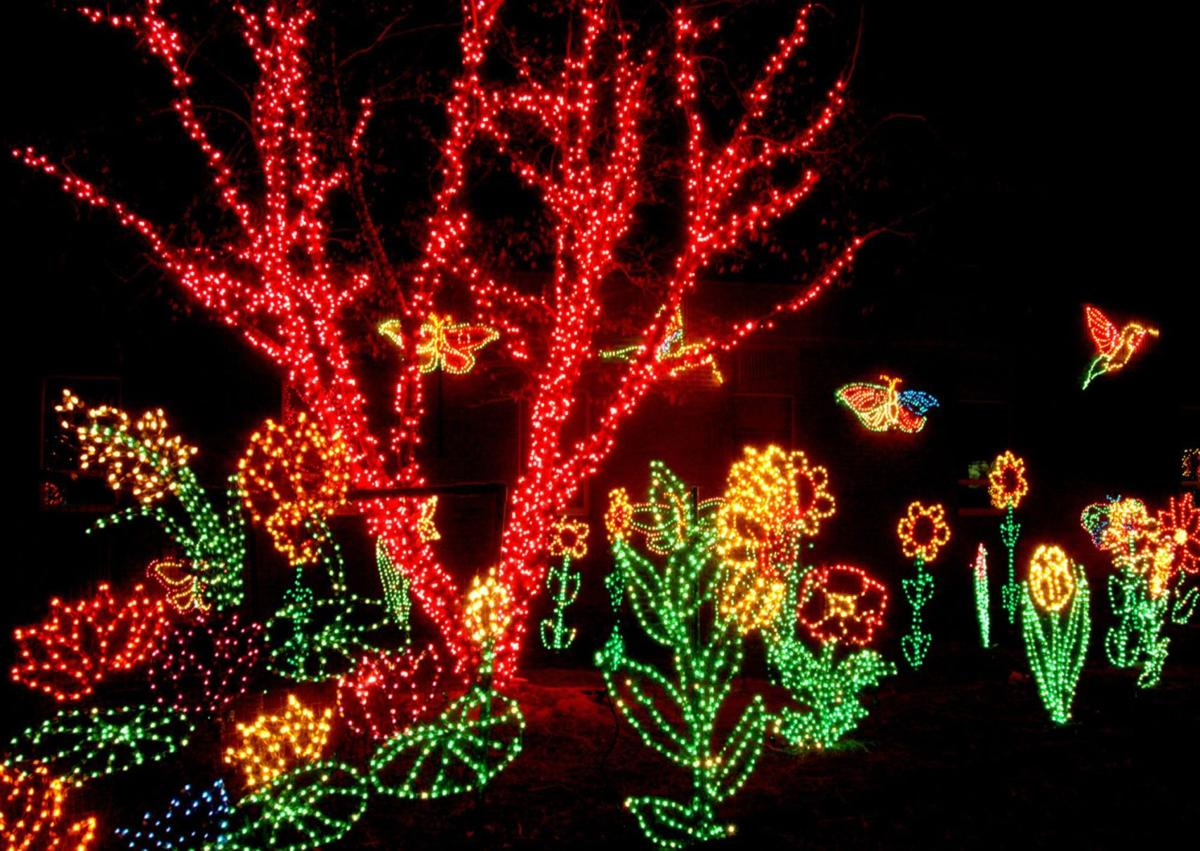 Riverbanks Zoo to celebrate 30 years of Lights Before Christmas ...