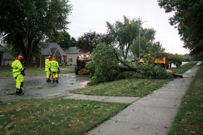 storm tree main1 20-08-10