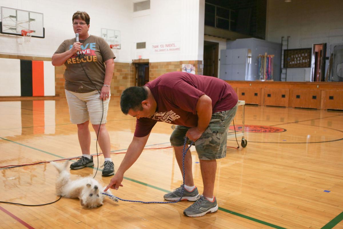 adams animal rescue3 19-09-24