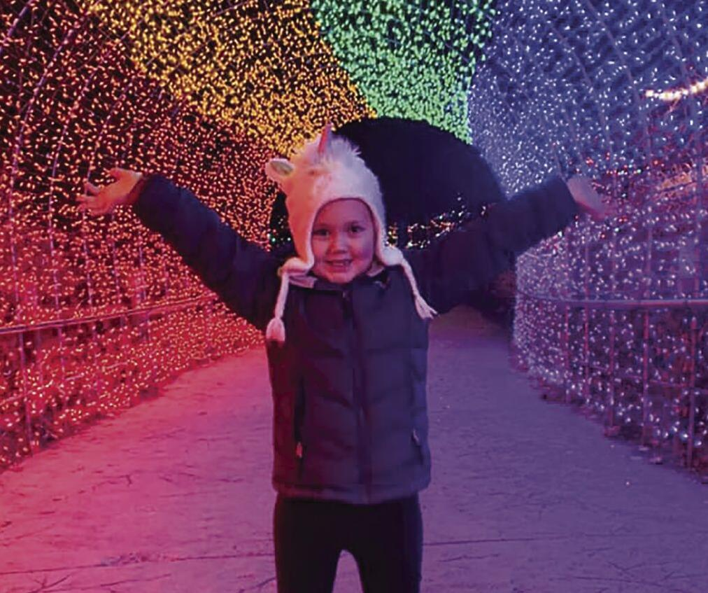 Festival of lights photo.jpg