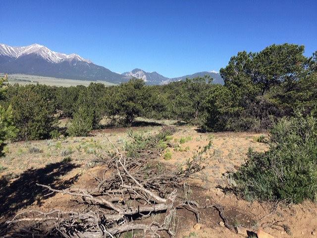 Camp Elevation Restoration