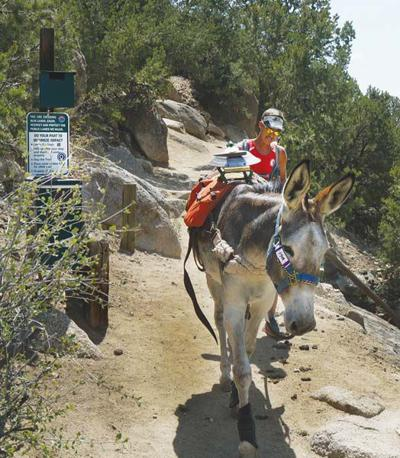 Colorado's summer heritage sport shines spotlight on Buena Vista