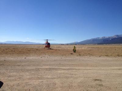 Search chopper
