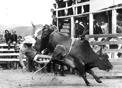 Rodeo 1960s bullrider