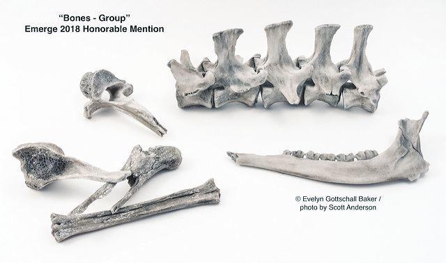 Bones - Group