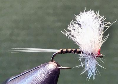 BWO dry fly