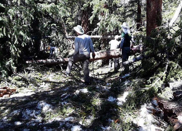 Volunteers clear the trail