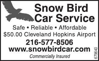 Snowbird Car Service