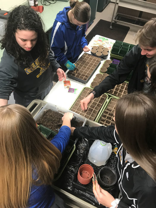 Conservation Club members plant seeds