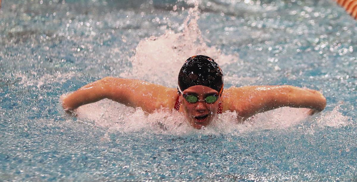 tigerswim2