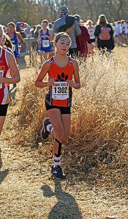 Melendez runs to win