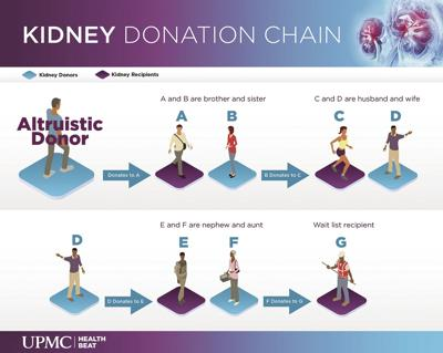 Kidney donation chain