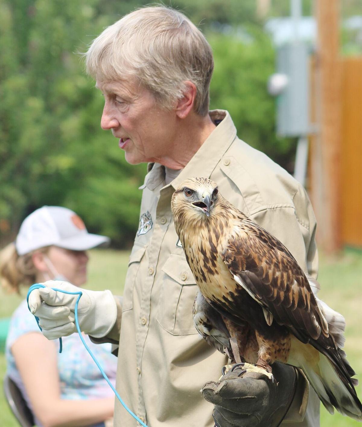 Montana Wild Wings Recovery Center Barbara Summer