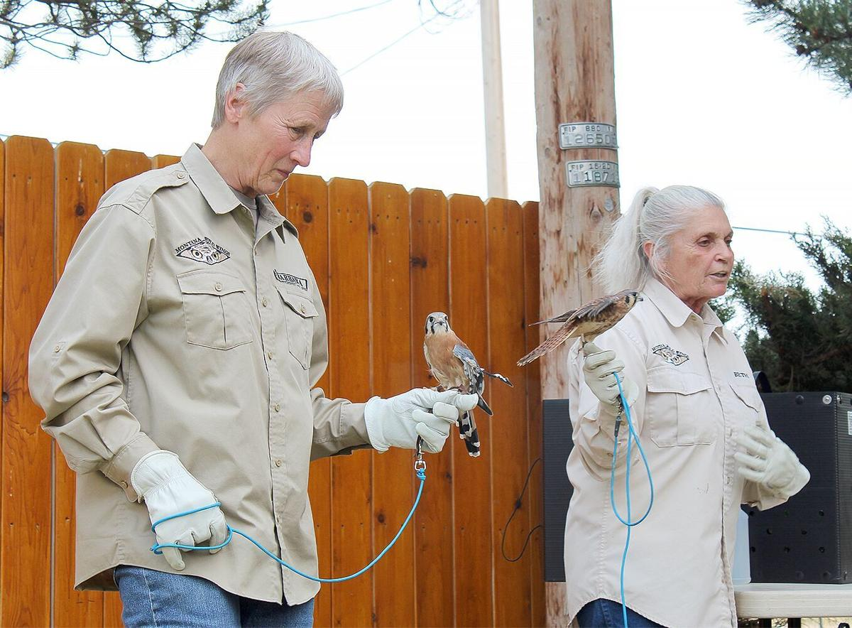 Montana Wild Wings Recovery Center volunteer Barbara Summer and Founder/Executive Director Beth Wante