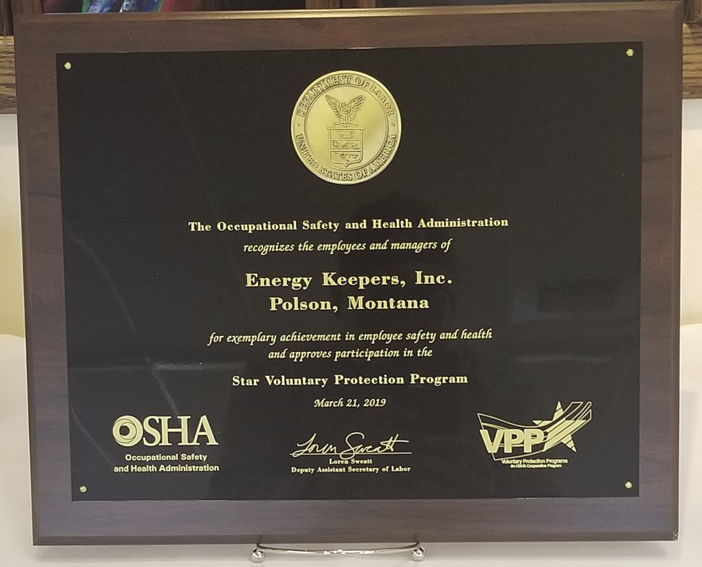 VPP Star plaque