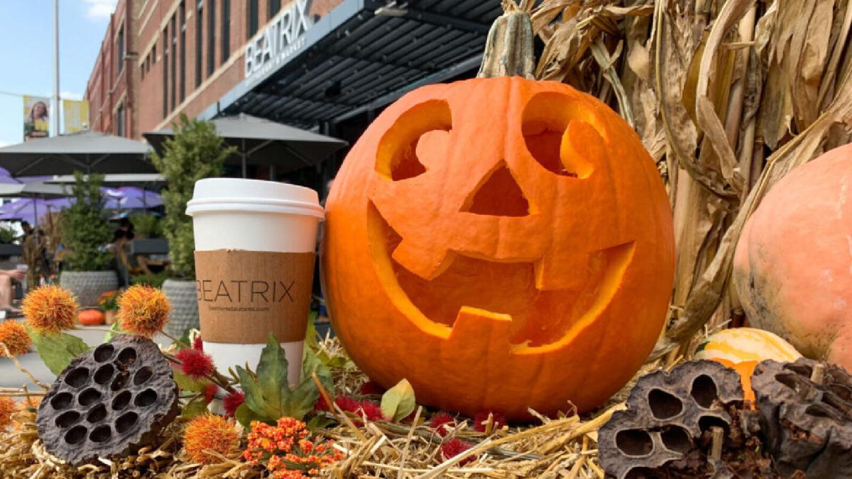 Beatrix Pumpkin Carving