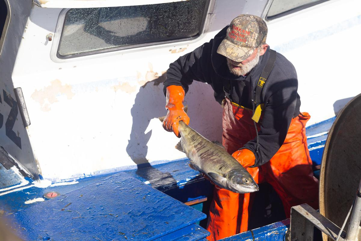 Walters unloads catch