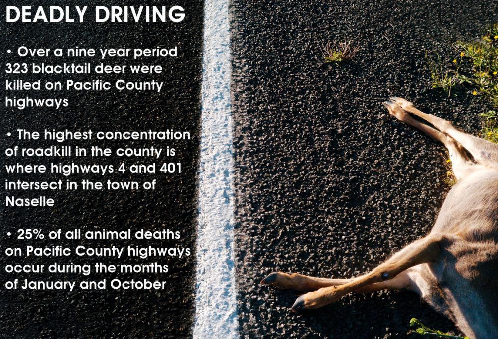 Caution: Wildlife crossing