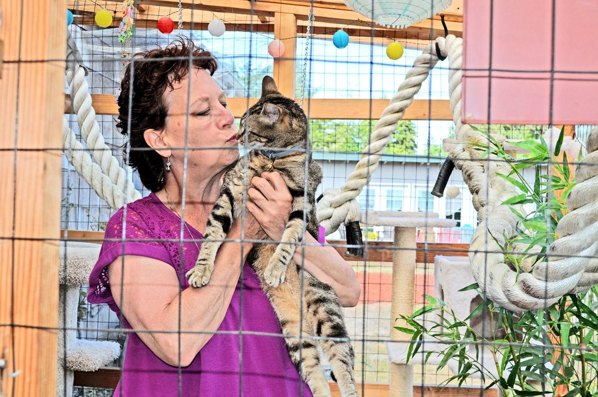 Sooz Laughlin cat kisses