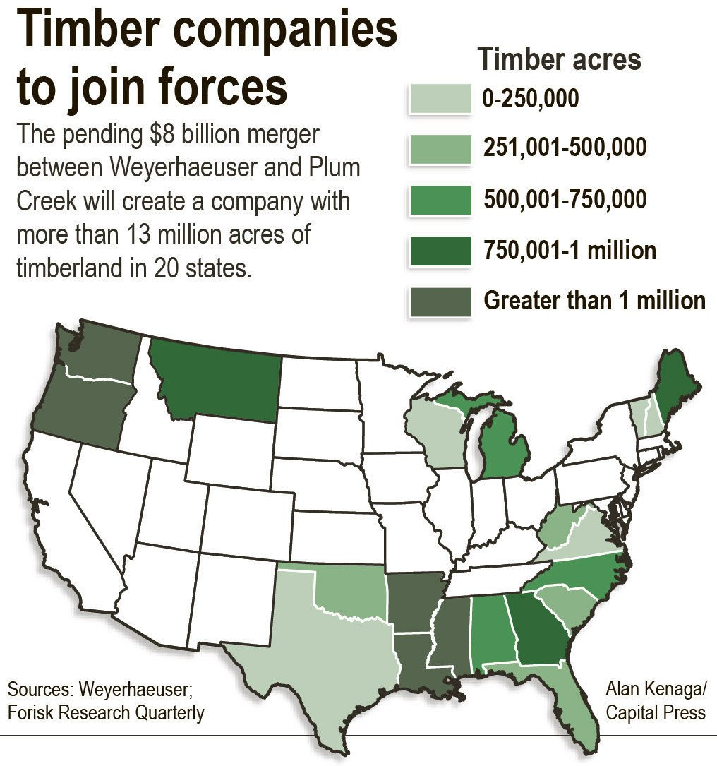 Forest giant Weyco set to get much bigger | South County News
