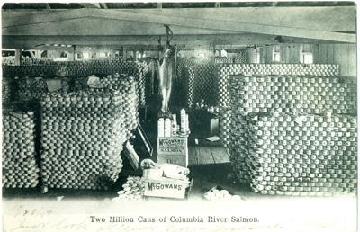 McGowan Cannery interior 1907
