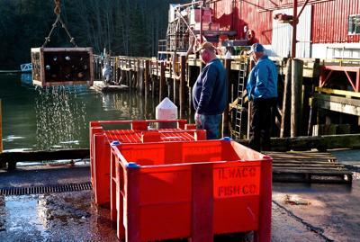 Jessie's Ilwaco Fish Co. fails to pay full bill to fishermen