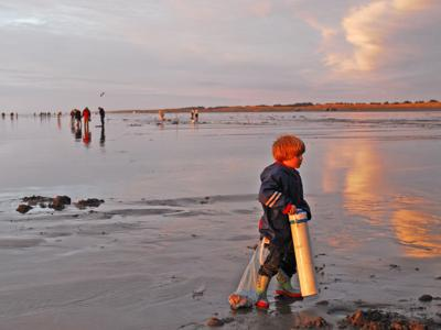 WDFW approves month-long razor clam dig at Long Beach