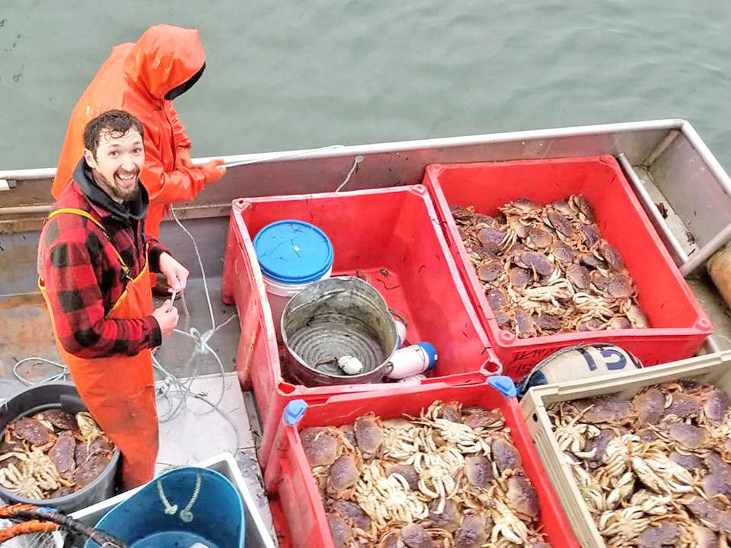 Willapa Bay crab