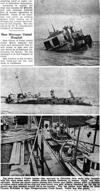 Reading 100 Years of the Chinook Observer: Seagull update