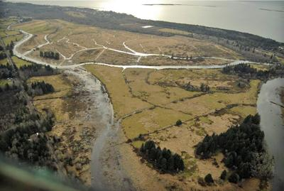 Chinook River estuary