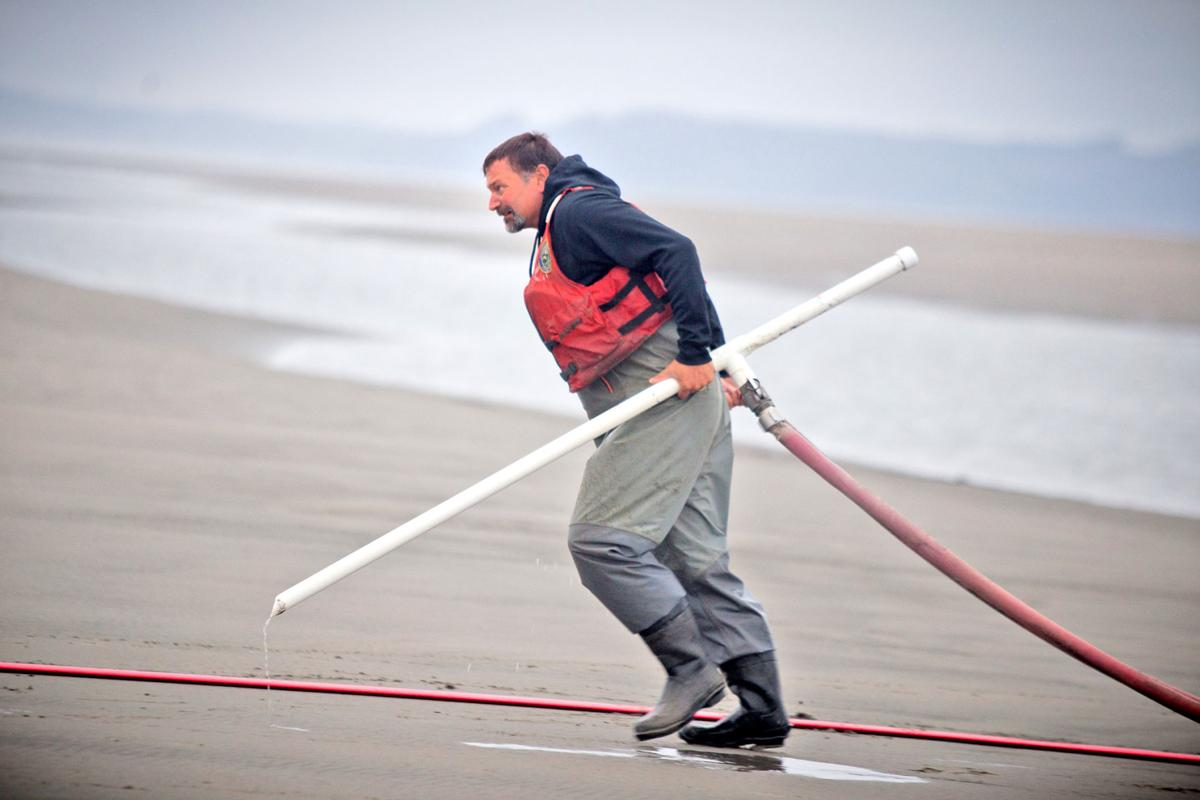 WDFW technician Travis Harding moves a pump to a new section of beach during the final razor clam survey of the summer