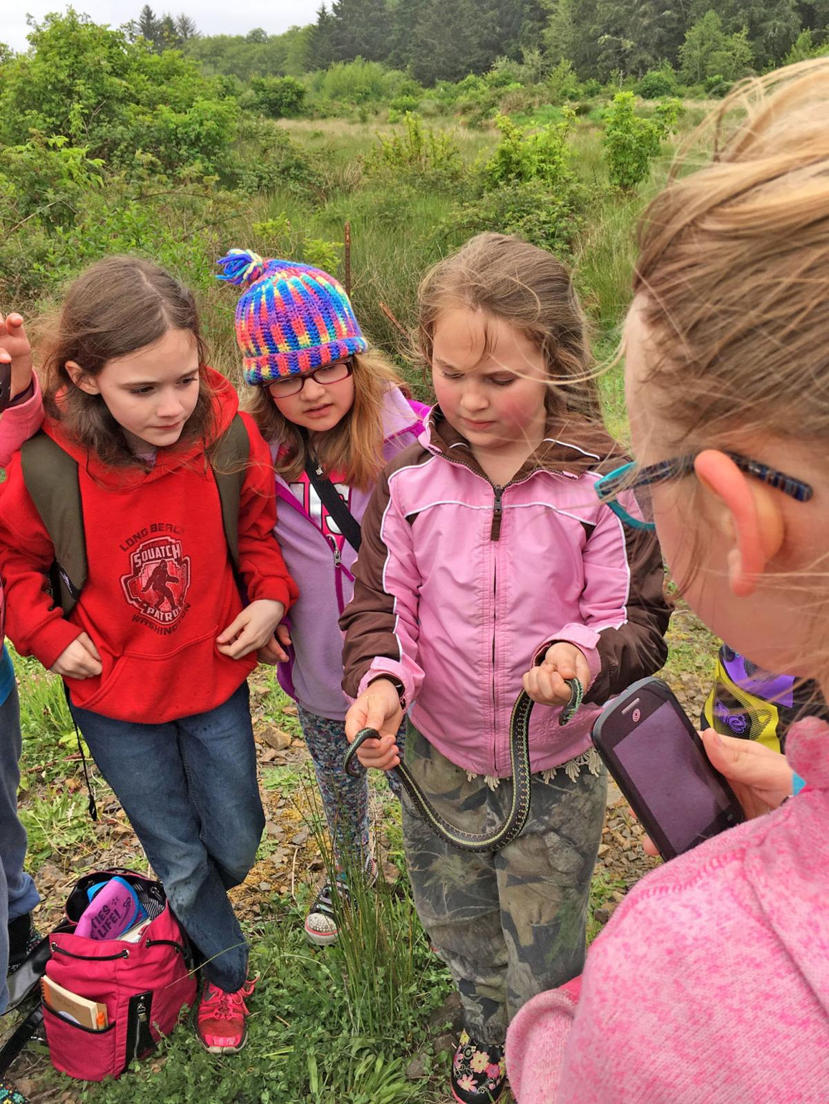 It's a wild world of environmental education out there