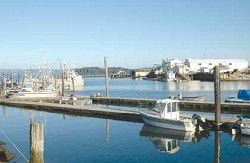 Port of Peninsula pier progresses; trail and trailer discussed