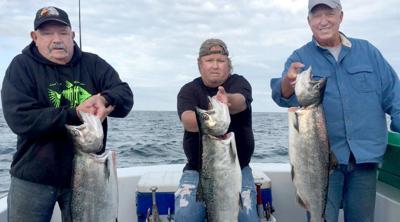 Ocean salmon