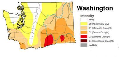 Washington Drought Monitor