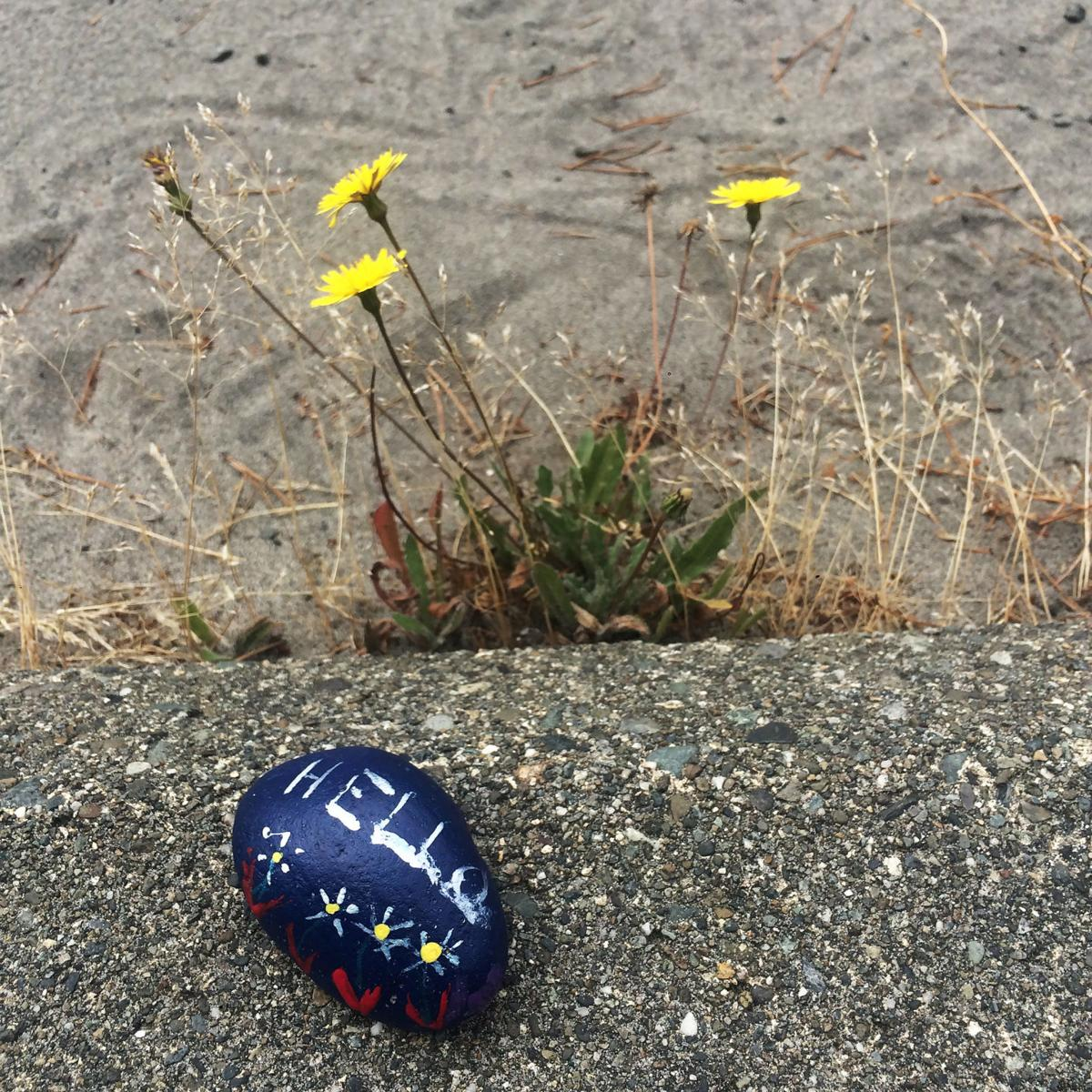 Hiding in plain sight Painted rock hunting comes to the Peninsula