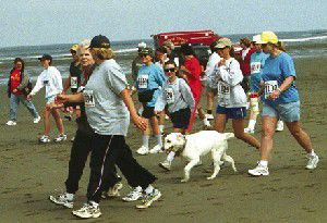 Locals dominate 27th annual Beach to Chowder Run