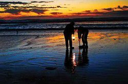 Washington's best place to dig razor clams