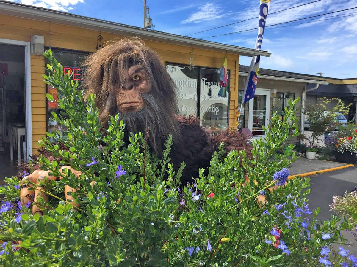 Ocean Park bigfoot