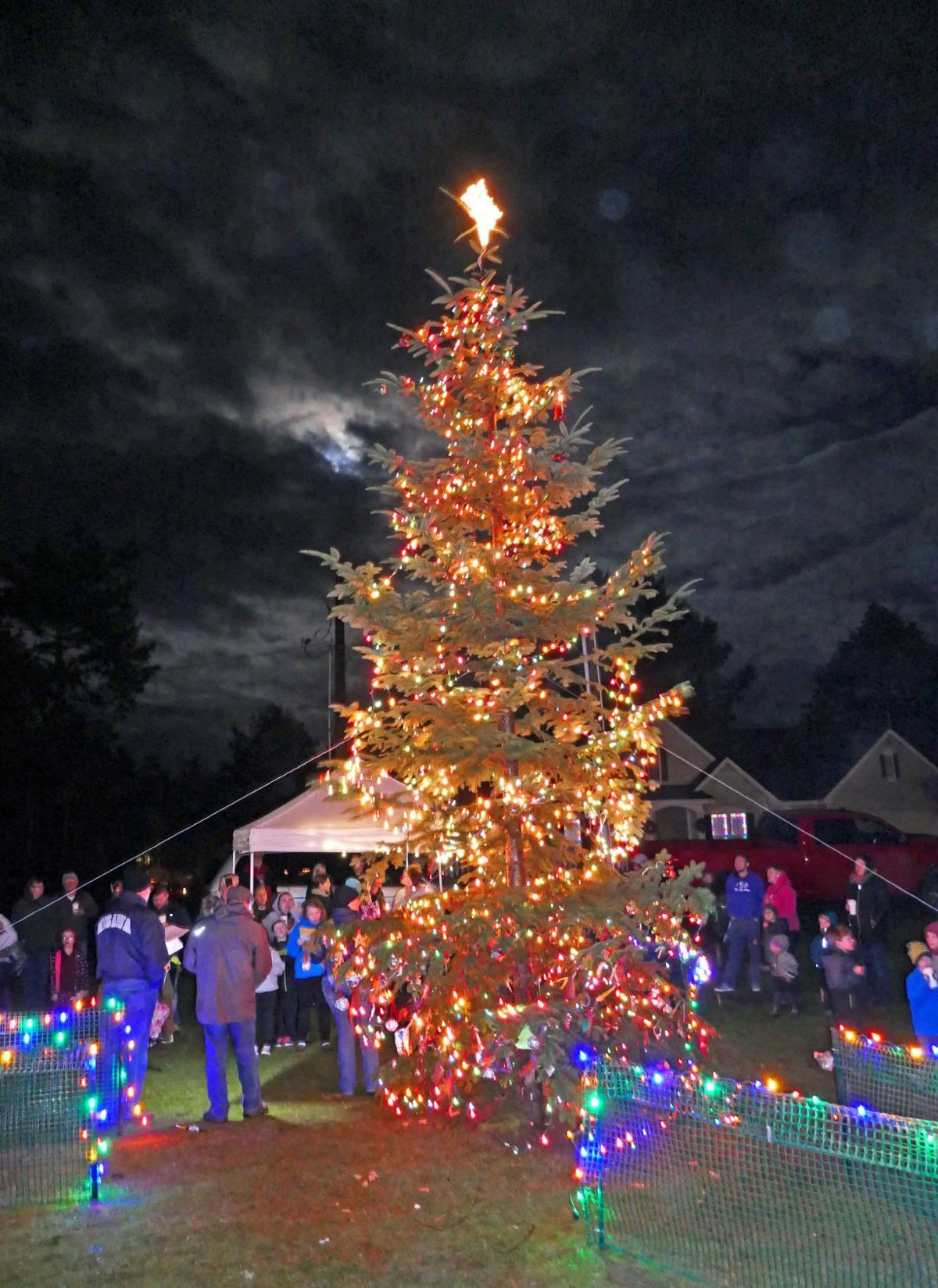 Ocean Park unites for tree lighting