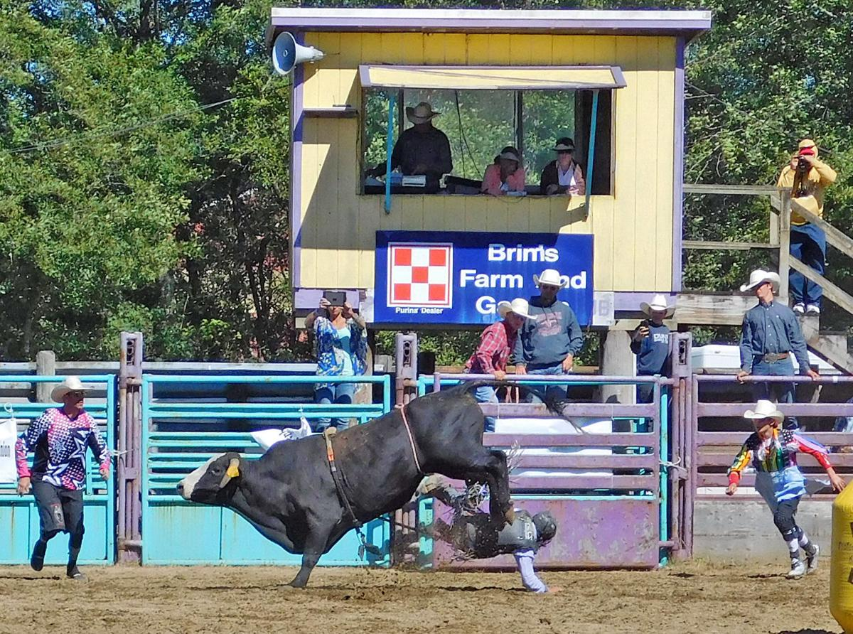 Top rodeo action attracts crowd to LB