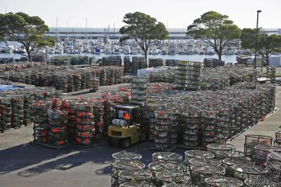 Crab season opening delayed until at least Dec. 15
