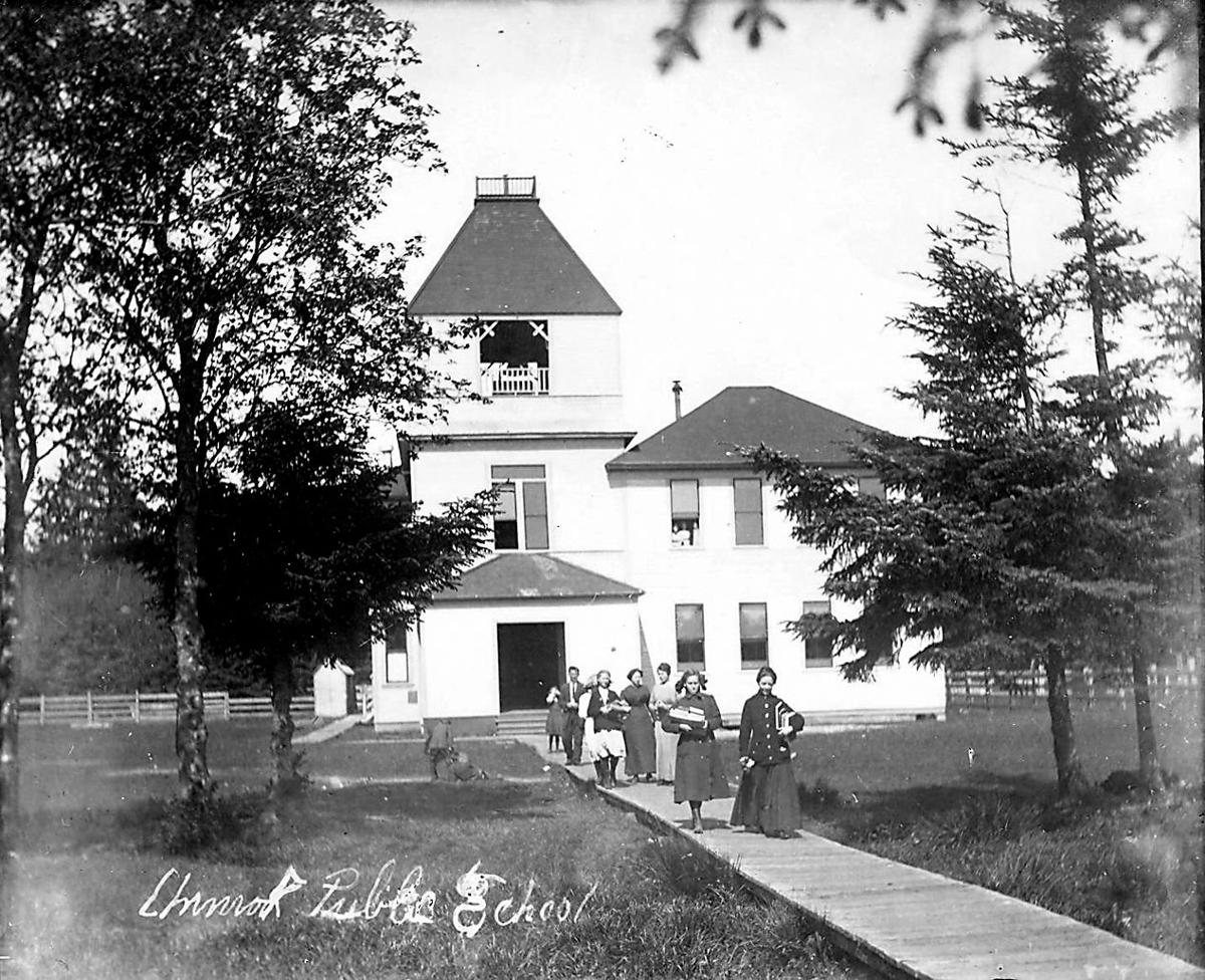 Early Chinook school
