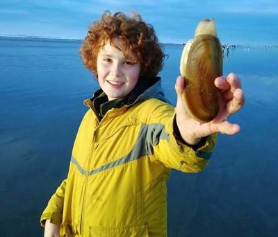 WDFW approves razor clam dig at Long Beach, Twin Harbors