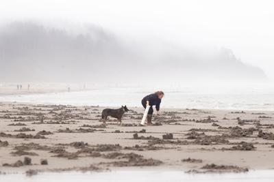 Jessie digs for clams with dog