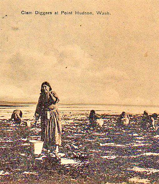 Native harvesters